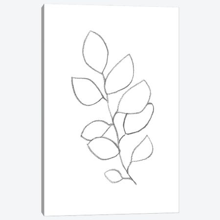Line Art Plant II Canvas Print #WWY124} by Whales Way Canvas Art Print