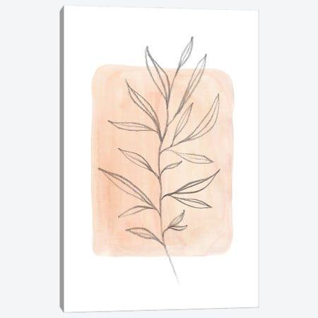 Pastel peach tone plant Canvas Print #WWY133} by Whales Way Art Print
