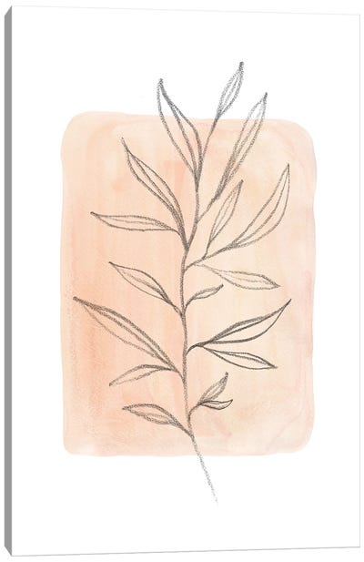 Pastel peach tone plant Canvas Art Print