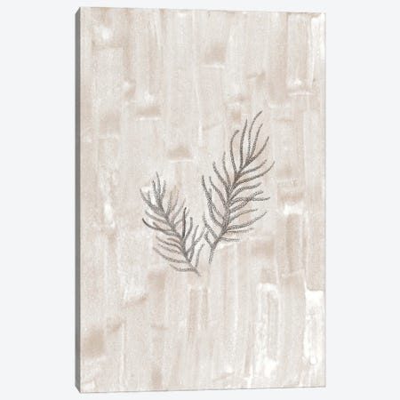 Neutral fir-needle Canvas Print #WWY218} by Whales Way Canvas Artwork