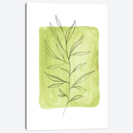 Olive Leaves Canvas Print #WWY45} by Whales Way Canvas Art Print