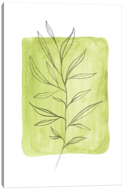Olive Leaves Canvas Art Print