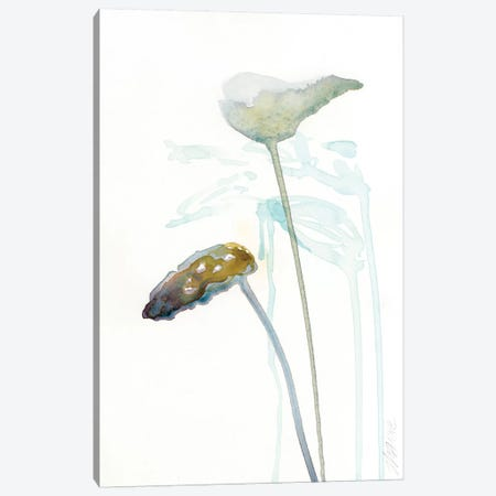 Botanical Study I Canvas Print #WYA9} by Wyanne Canvas Art Print