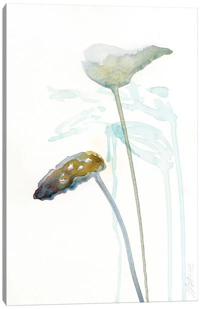 Botanical Study I Canvas Print #WYA9
