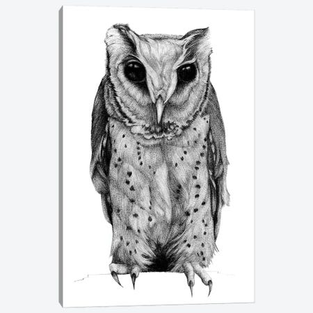 Oriental Bay Owl Canvas Print #XAN31} by Anastasia Alexandrin Canvas Artwork