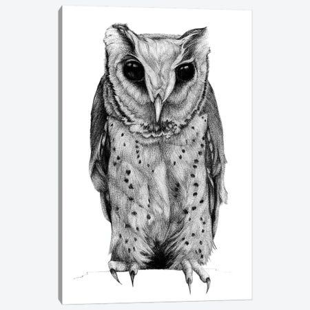 Oriental Bay Owl Canvas Print #XAN31} by Anastasia Alexandrin Canvas Artwork