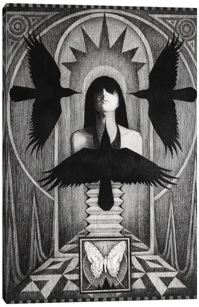 Three Crows Canvas Art Print