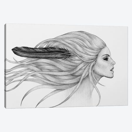Black Feather Canvas Print #XAN45} by Anastasia Alexandrin Canvas Artwork