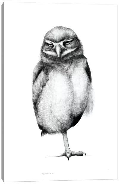 Annoyed Owl Canvas Art Print