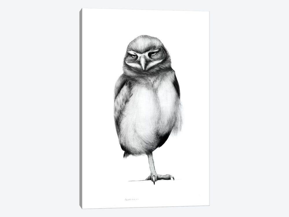 Annoyed Owl by Anastasia Alexandrin 1-piece Art Print