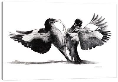 Conflict Of flight Canvas Art Print