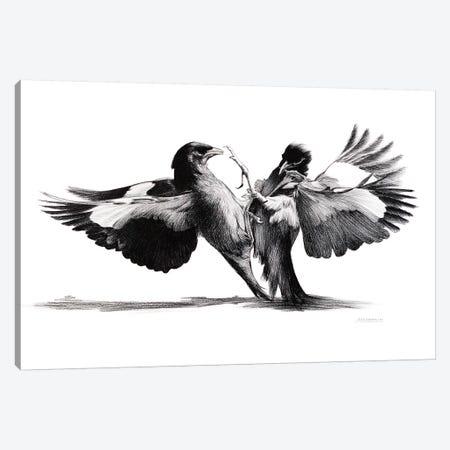 Conflict Of flight Canvas Print #XAN9} by Anastasia Alexandrin Canvas Wall Art