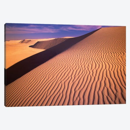 Gypsum Sand Dunes In The Evening Light, White Sands National Monument, New Mexico Canvas Print #YAJ5} by Yva Momatiuk & John Eastcott Canvas Wall Art