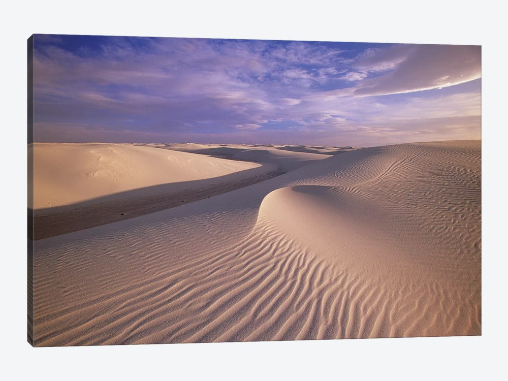 Sand Dunes Of Fine Gypsum Particles Textured By Wind, White Sands National Monument, New Mexico by Yva Momatiuk & John Eastcott 1-piece Canvas Artwork