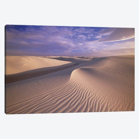 Sand Dunes Of Fine Gypsum Particles Textured By Wind, White Sands National Monument, New Mexico Canvas Print #YAJ9} by Yva Momatiuk & John Eastcott Art Print
