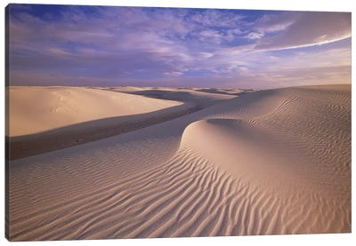 Sand Dunes Of Fine Gypsum Particles Textured By Wind, White Sands National Monument, New Mexico Canvas Art Print