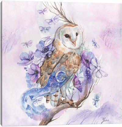 Barn Owl And Night Moths Canvas Art Print