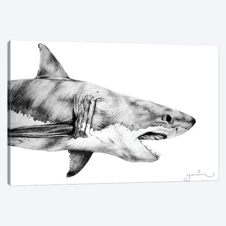 Great White Canvas Print #YAR10} by Yanin Ruibal Canvas Artwork