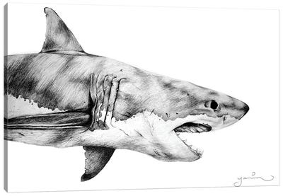 Great White Canvas Art Print