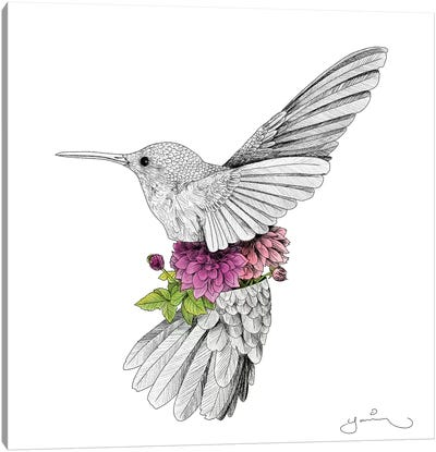 Hummingbird And Dhalias Canvas Art Print