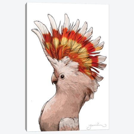 Pink Cockatoo Canvas Print #YAR18} by Yanin Ruibal Canvas Artwork