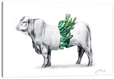 Prickly Bull Canvas Art Print