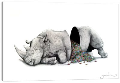 Sleeping Rhino Piñata Canvas Art Print