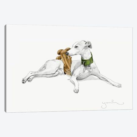 Aurelio I Canvas Print #YAR3} by Yanin Ruibal Canvas Wall Art