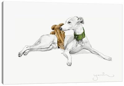 Aurelio I Canvas Art Print