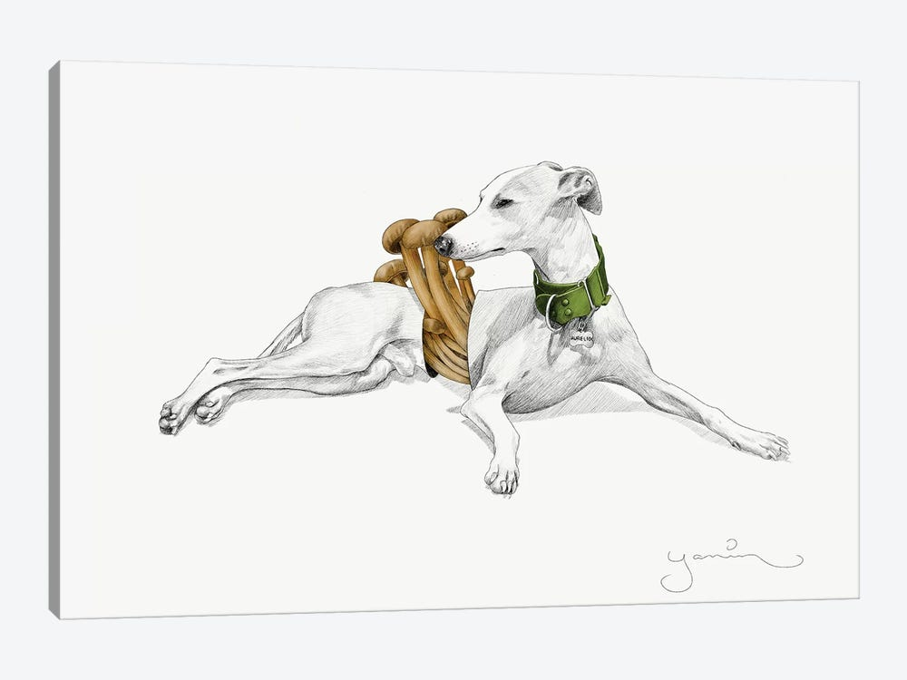 Aurelio I by Yanin Ruibal 1-piece Canvas Art