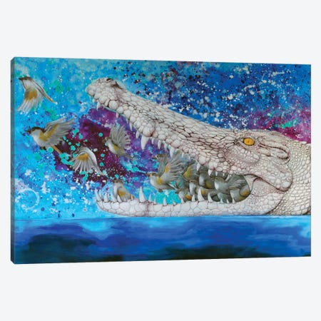 Crocodile Dream Canvas Print #YAR6} by Yanin Ruibal Canvas Art Print
