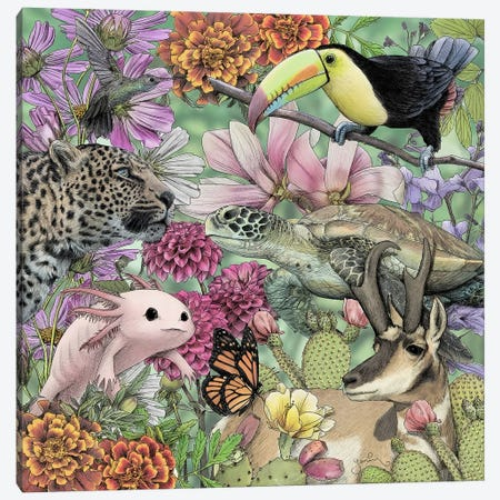 Flora And Fauna Of Mexico Canvas Print #YAR9} by Yanin Ruibal Canvas Artwork