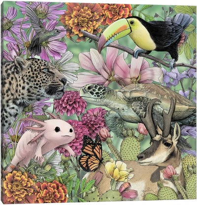 Flora And Fauna Of Mexico Canvas Art Print