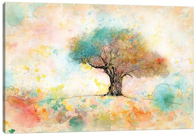 Citrus Tree Canvas Art Print