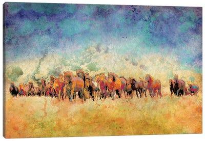 Horse Herd Canvas Art Print