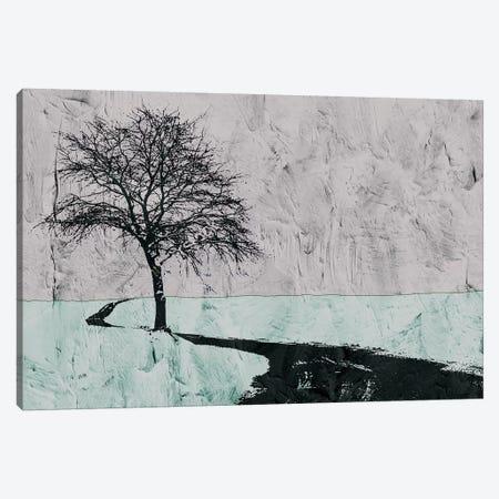Near The Road Canvas Print #YBM42} by Ynon Mabat Canvas Art