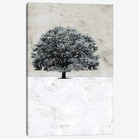 Old Black Tree Canvas Print #YBM46} by Ynon Mabat Canvas Print