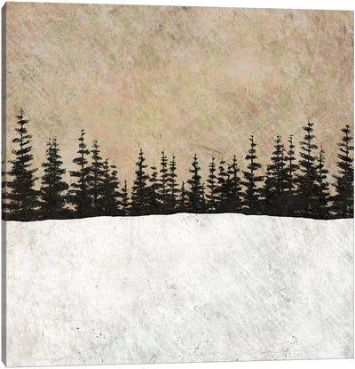 One Evening Canvas Art Print