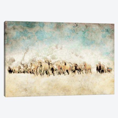 Roaming Horses Canvas Print #YBM58} by Ynon Mabat Art Print