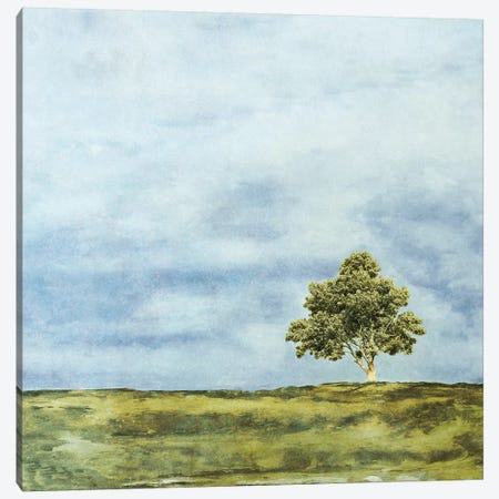 Summer Oak Canvas Print #YBM66} by Ynon Mabat Canvas Print