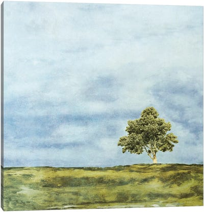 Summer Oak Canvas Art Print