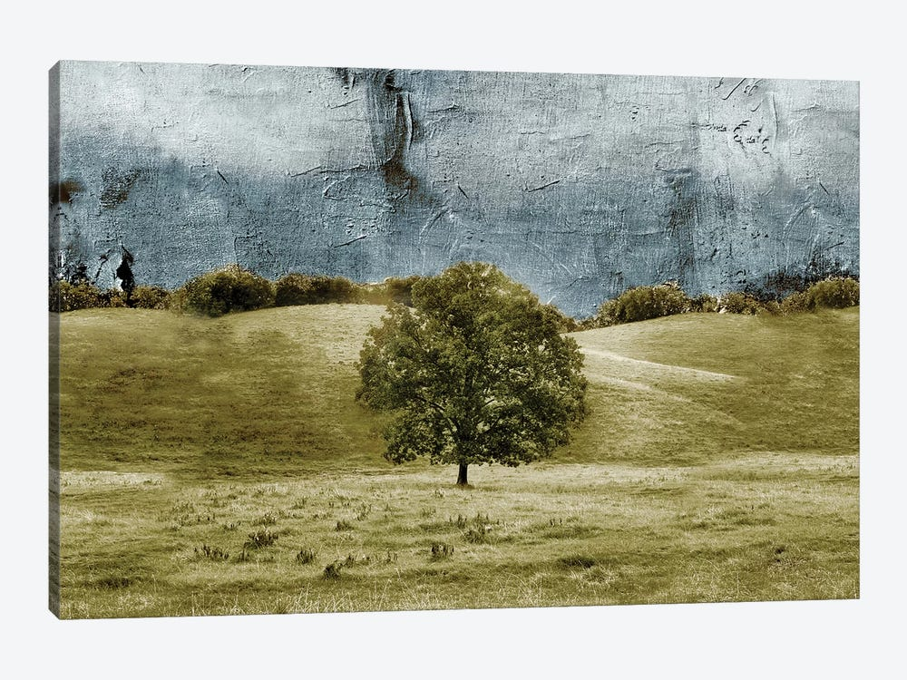 Tree In The Valley by Ynon Mabat 1-piece Canvas Art