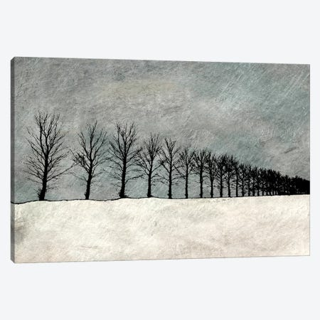 Winter Row Canvas Print #YBM78} by Ynon Mabat Canvas Print