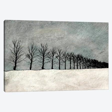 Winter Row Canvas Print #YBM78} by Ynon Mabat Canvas Print