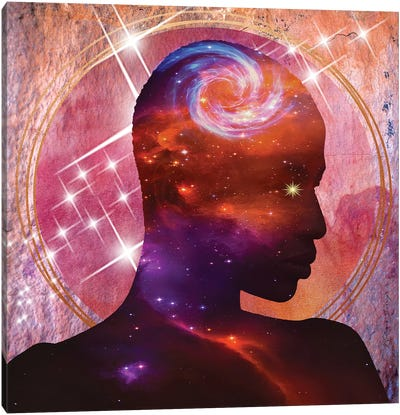 I Am The Universe Canvas Art Print