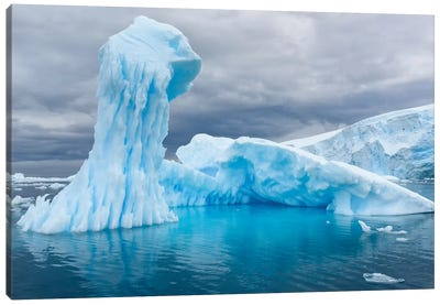 Antarctica, Antarctic Peninsula, Curtis Cove Icebergs. Canvas Art Print