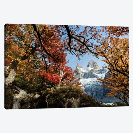 Argentina, Los Glaciares National Park. Mt. Fitz Roy Through Window Of Lenga Beech Trees In Fall. Canvas Print #YCH34} by Yuri Choufour Canvas Artwork