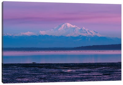 Canada, British Columbia, Boundary Bay. Mount Baker From The Shoreline At Sunset. Canvas Art Print