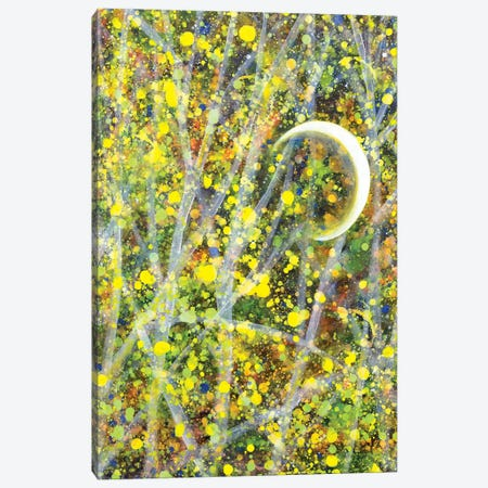 Rock A Bye Canvas Print #YFS103} by Yolanda Fernandez-Shebeko Canvas Artwork