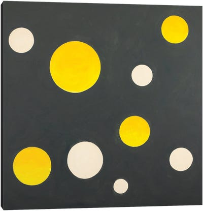 Nine Completed Circles Canvas Art Print